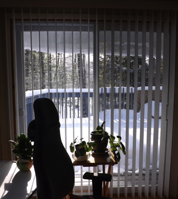 2014 MAR 6 ice awning