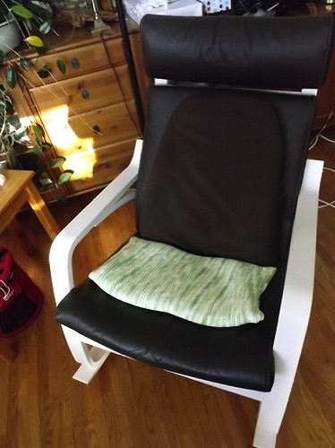 DSCF0585 seat cushion