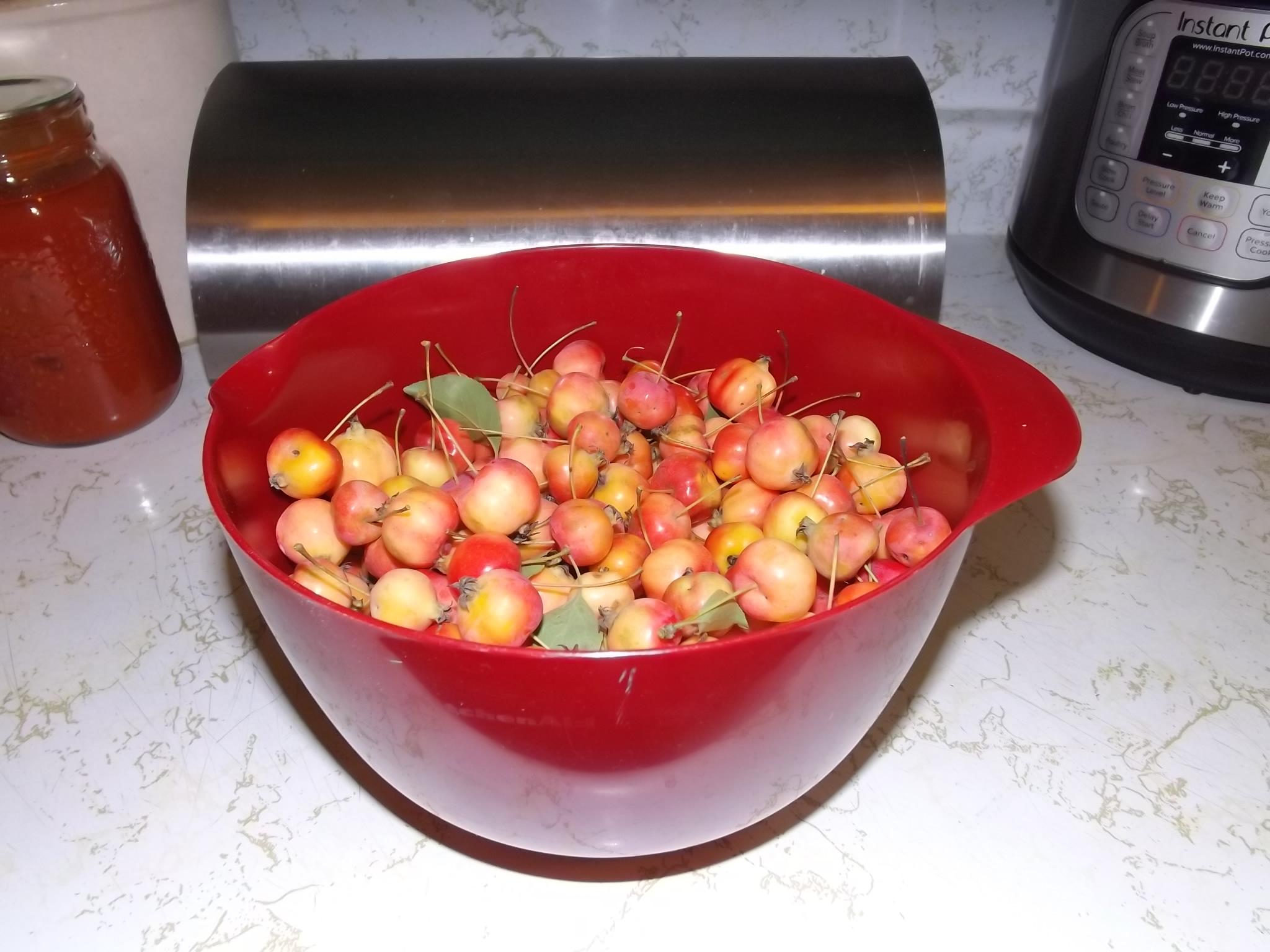 a bowl of crabapples