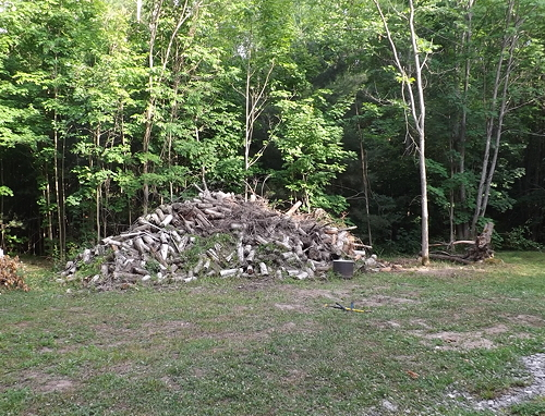 Rideau cedar log pile july