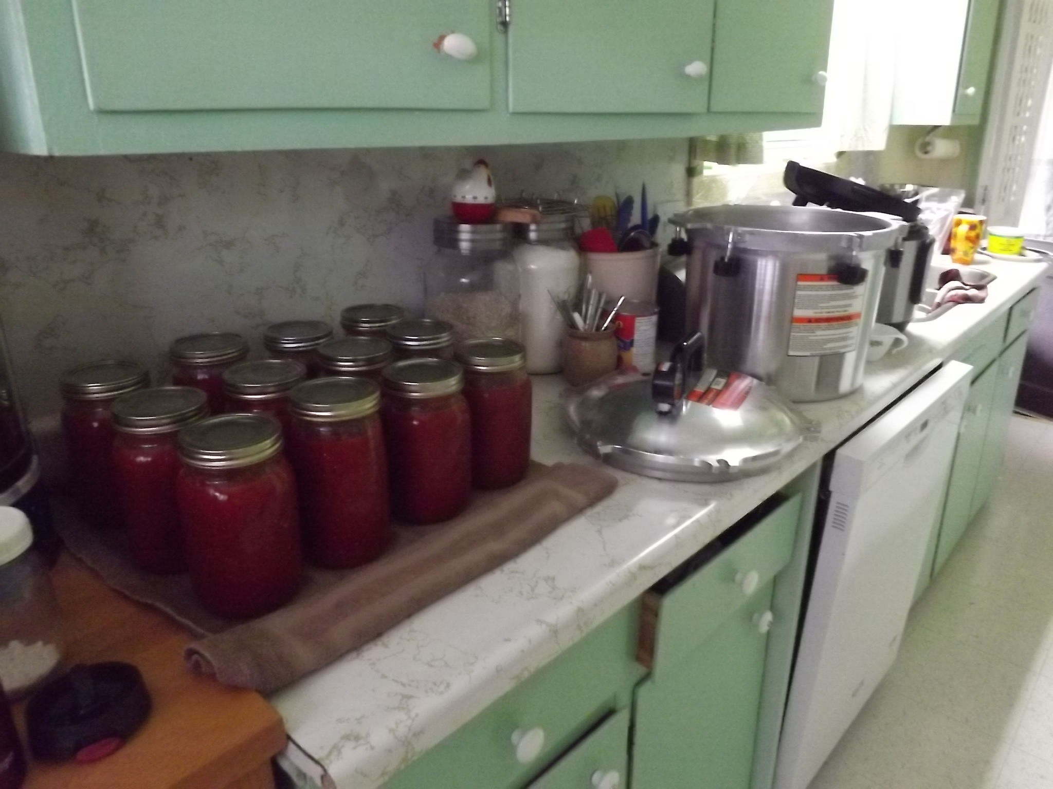 jars of tomatoes on kitchen counter