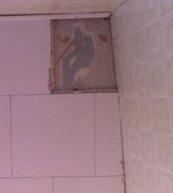 Bathroom ceiling tile original