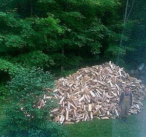 Attila versus the big wood.