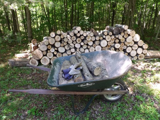 Log stacking june 2017 DSCF0787