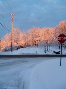 My drive to work one morning in Muskoka.