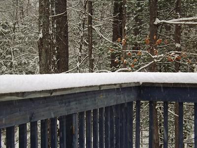 Snow14Nov2014