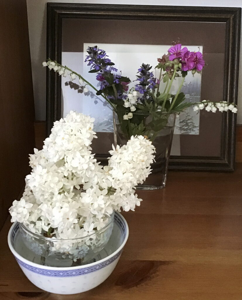 Lilac, Lily of the Valley, Bugleweed, wild geranium